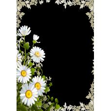 Magnetka kvety 003