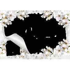 Magnetka kvety 007