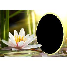 Magnetka kvety 014